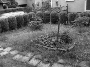ガーデンリフォームビフォー1